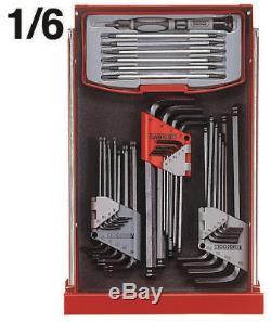 Teng Tools Mega Master 1001 Piece Tool Kit TCMM1001EV Limited Edition EV Cabinet