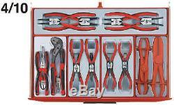 Outils Teng Mega Maître 1001 Piece Tool Kit Tcmm1001ev Limited Edition Ev Cabinet